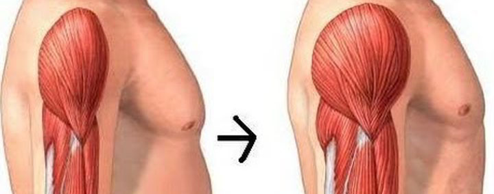 ganar masa muscular nutricionista valencia