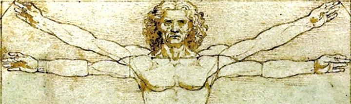 composición corporal dististas valencia