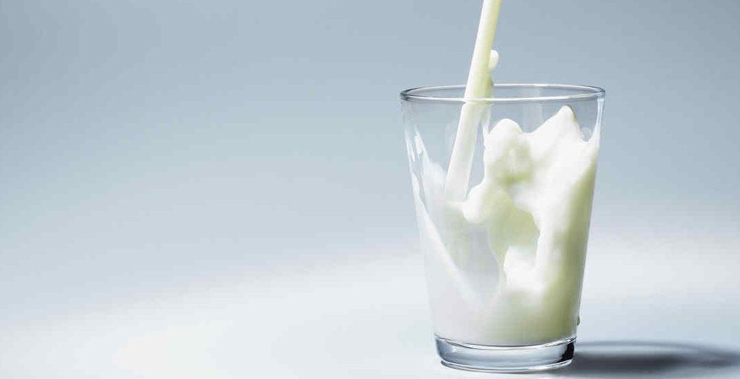 ¿Cómo hacen la leche sin lactosa?