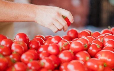 Dieta mediterránea: patromonio inmaterial de la humanidad